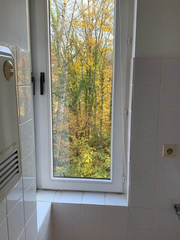 3 bed Property For Rent in Brussels,  - 22