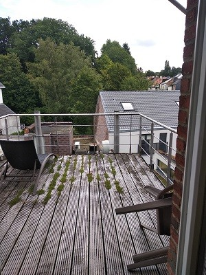 2 bed Property For Rent in Brussels,  - 32